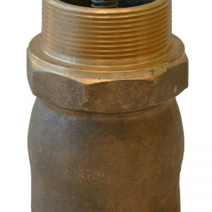 Outlet Check Valves